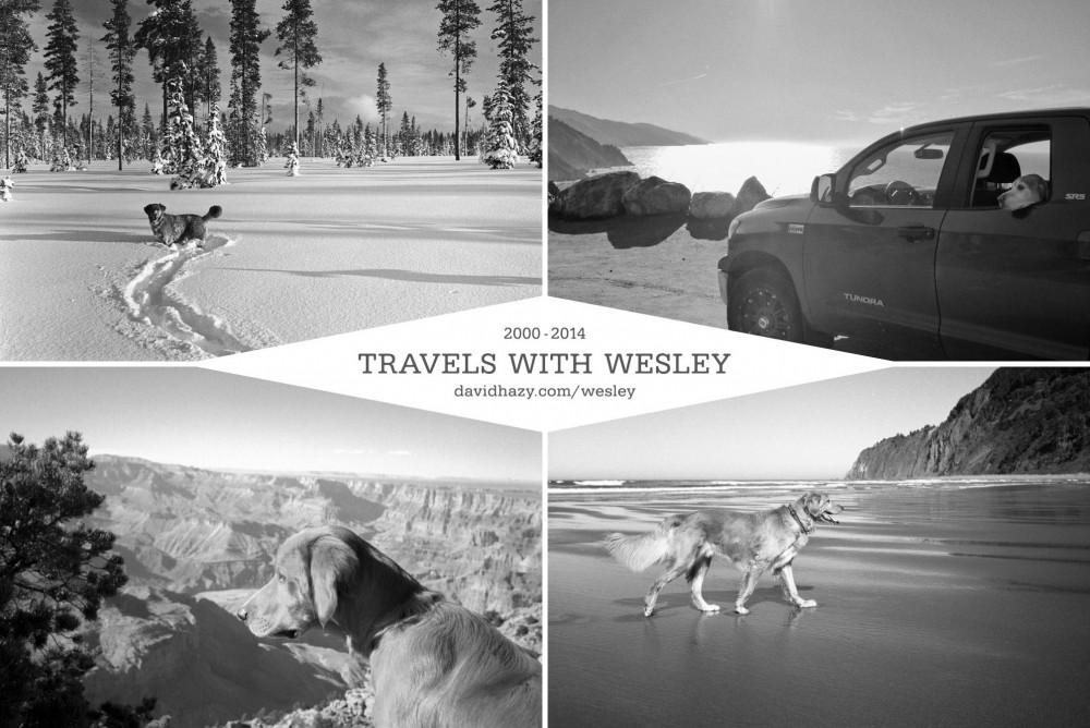 travels_with_wesley_postcard2